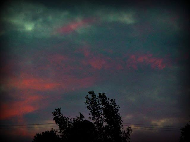 I took this last night! Love the colors!! Richland, Wa