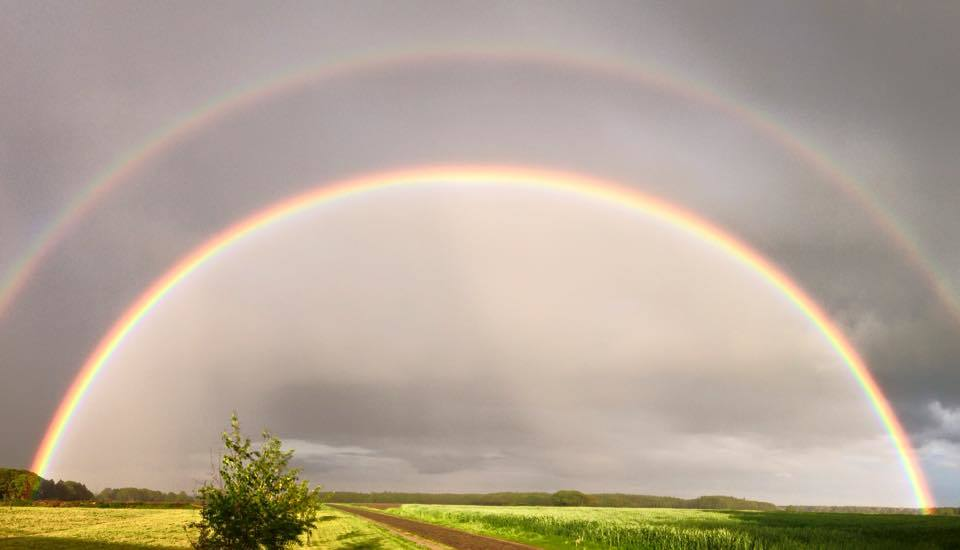 This rainbow I found last night in Meckelstedt / Northern Germany