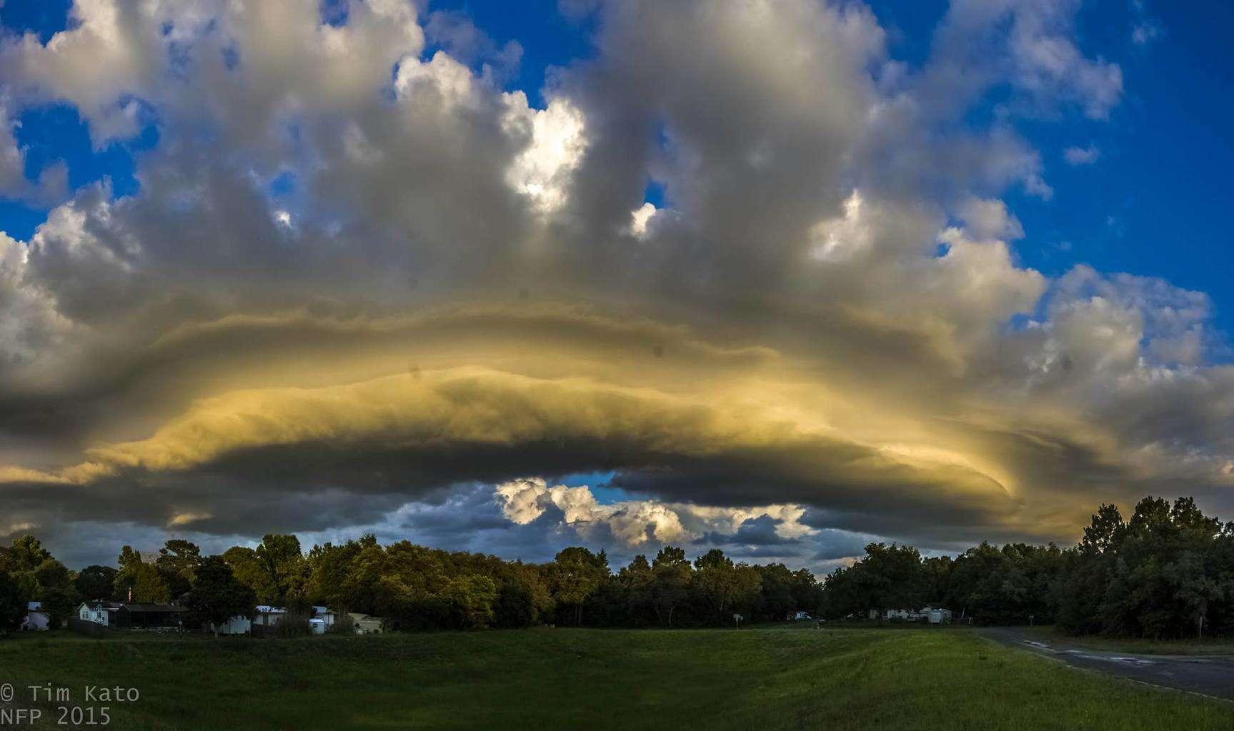 Shelf Cloud over Citrus Co Citrus Springs, FL 6/8/2015