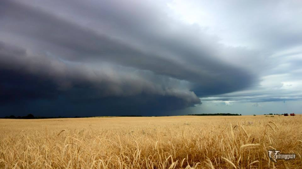 Beautiful shelf cloud as it moved across a golden wheat field near Crescent Oklahoma last evening.