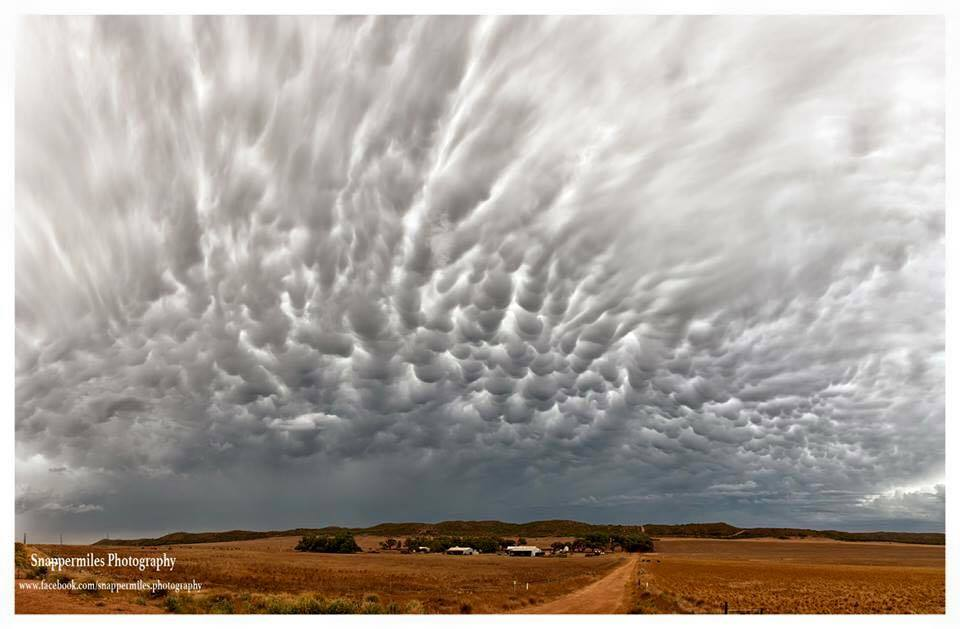 This shot is an am eight image pano of the rear end of a severe storm that went through Perth W.A in February this year! The best mamatus clouds I have seen in W.A