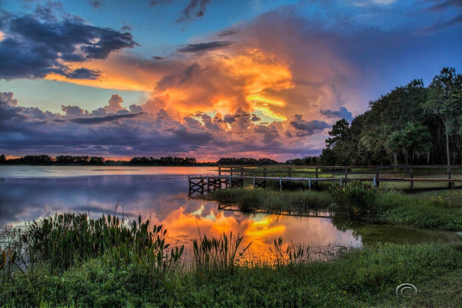 Amazing color last night as the sun was setting between two thunderstorms in Tampa as seen from Hardee Lakes Park in Bowling Green, Florida