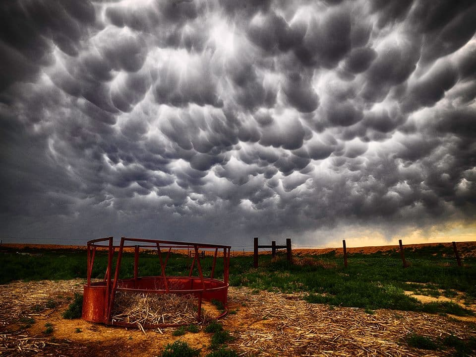 Mammatus Clouds!