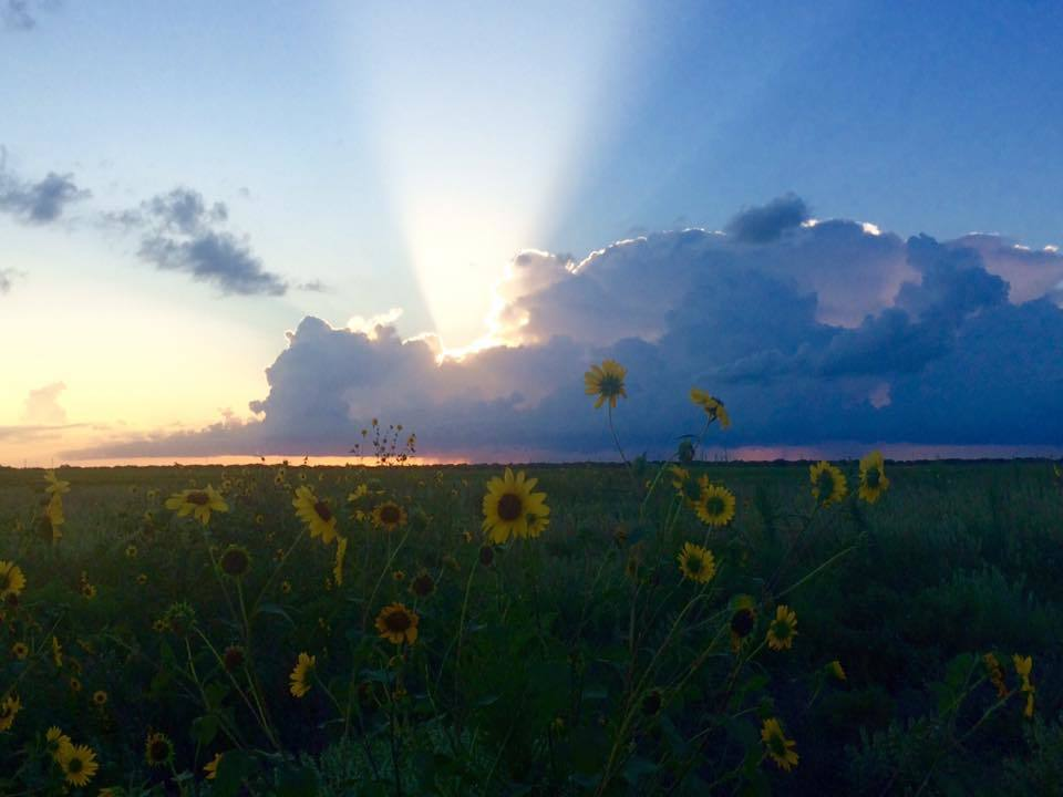 Sun setting behind a storm developing to the west of Dilley in Frio County here in south Texas!