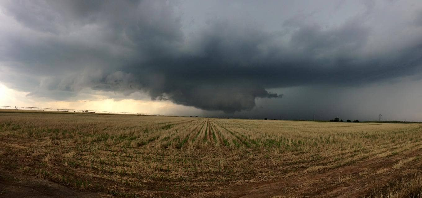 South of Muleshoe, Texas at 3:35 today.