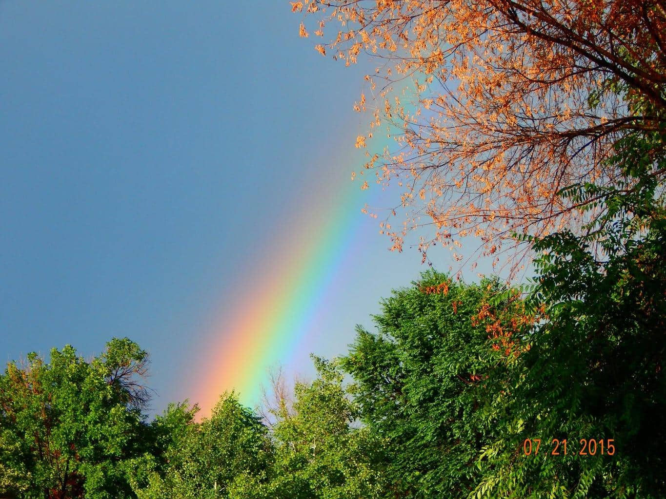 part of a beautiful rainbow that came after our short lived monsoon!