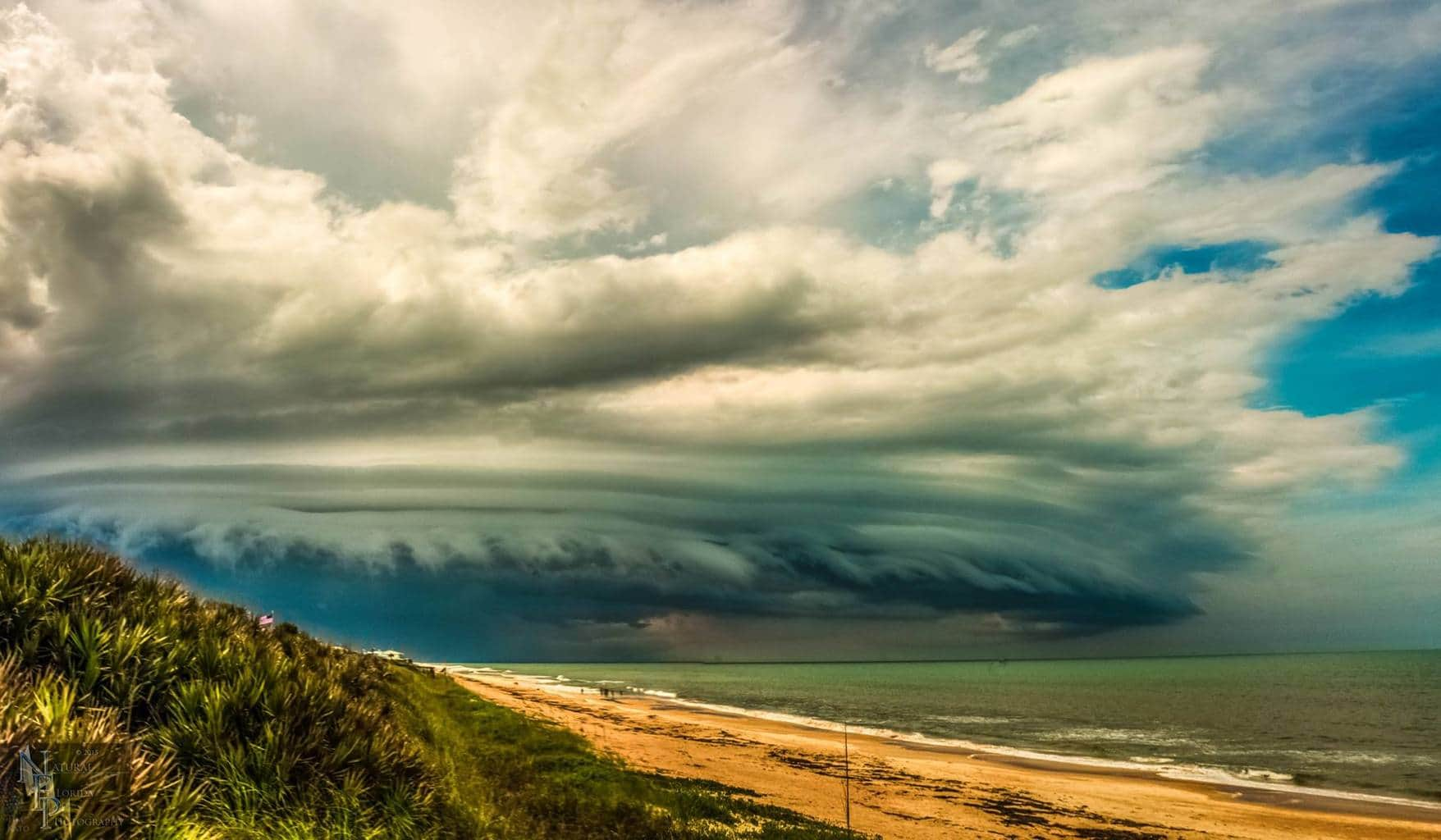 """"""" The Beast """" Flagler Beach, FL 6/25/15 One of the most photogenic shelf clouds I have ever seen. I took many shots of this beast but this 1 seemed to pop out more both in color and structure. Enjoy"""