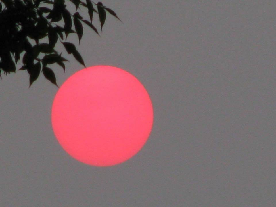 First time posting..here in minnesota a pic of the sun..a lot of smoke over the state from the forest fires in Canada and out west