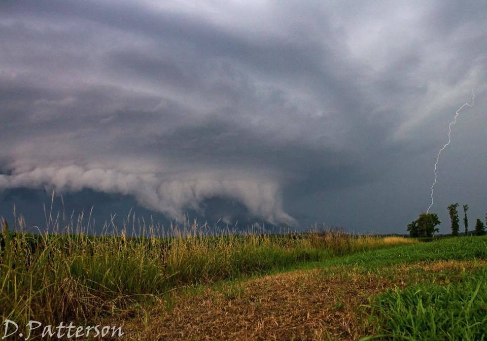 Tornado warned storm last night near Zalma MO. There was no sight of a tornado. Some shelf clouds have teeth, this one had fangs!