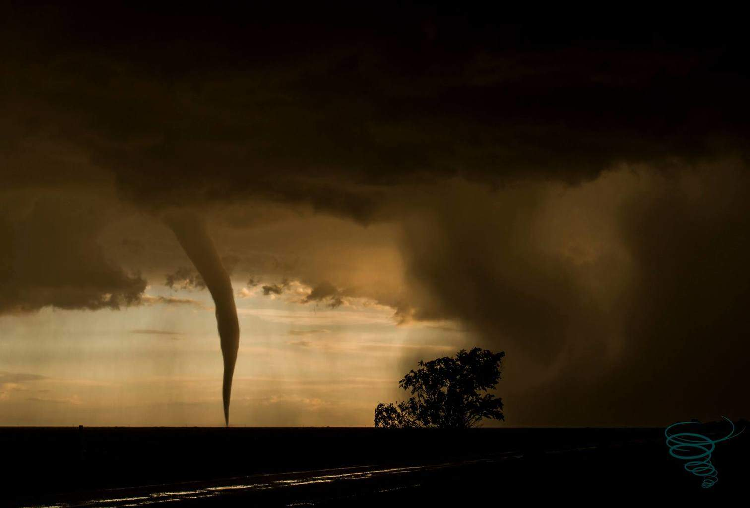 A tornado churns through open farmland east of Milnesand, New Mexico on May 29, 2015.