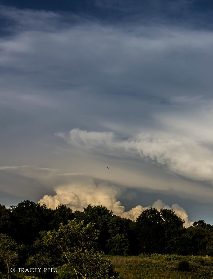 Gorgeous cloud structures from July 17th, Wheaton, IL. Haven't had a lick of interesting weather since then - come on storms!! Come to Tracey!