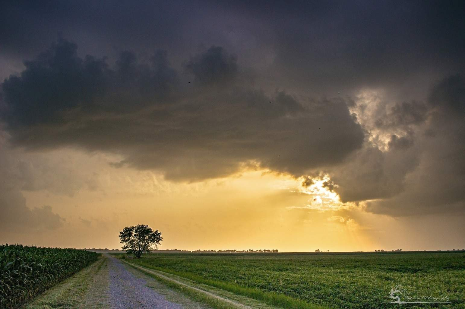 Breaking through after the first line of rain. 7/1/2015 Gillespie Il.