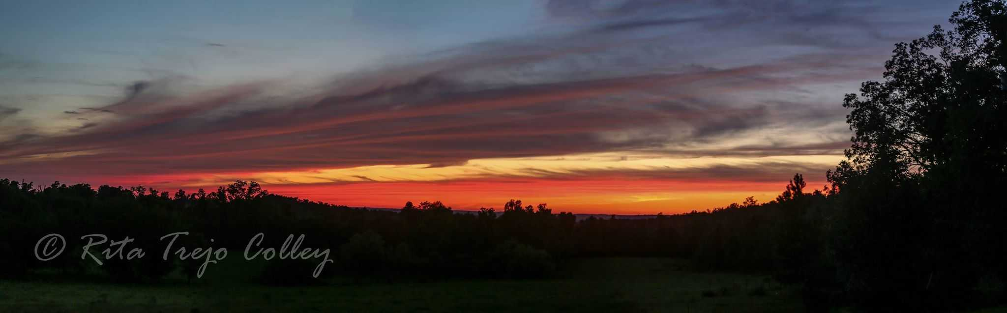 Panorama of the gorgeous sunset in Kentucky tonight.