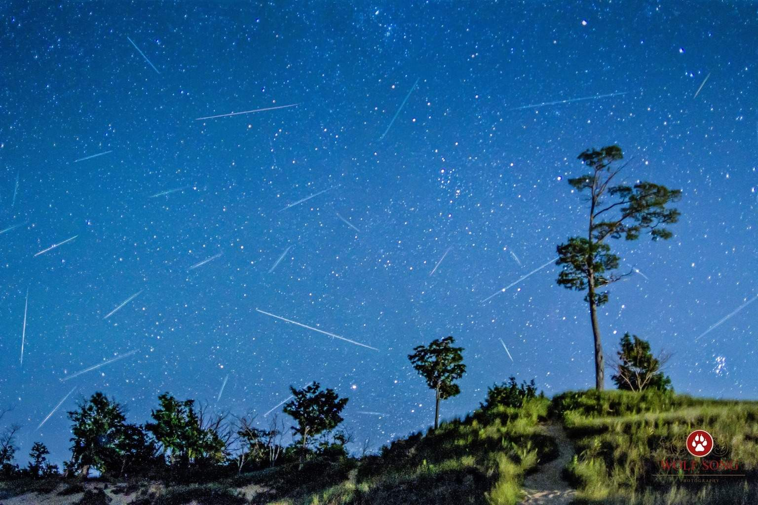 Hey everyone! Here is a shot of the perseid meteors from 8/12/15 in Michigan!
