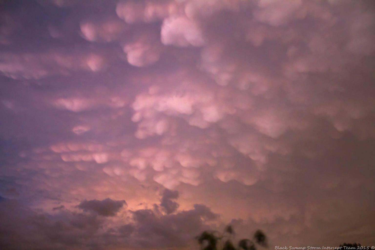 Impressive mammatus show as some off and on severe warned storms passed just south of the area. August 23, Clyde, Ohio.