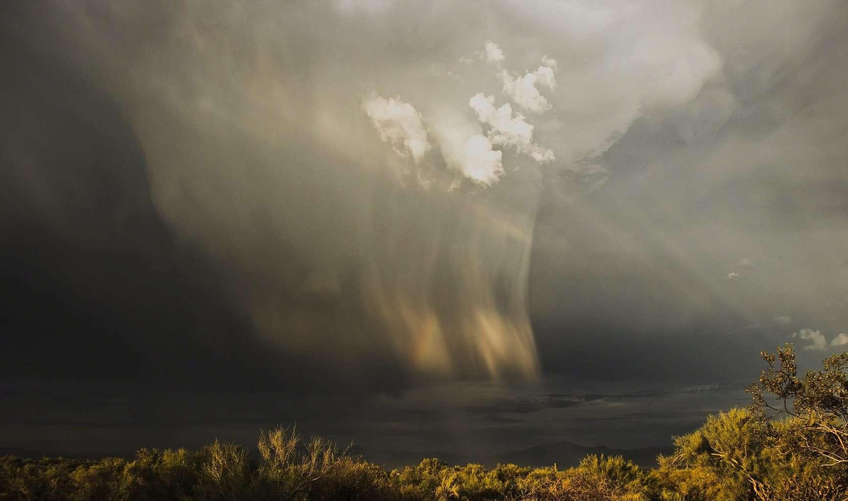 Taken in North Scottsdale, Arizona. September 12th, 2015.