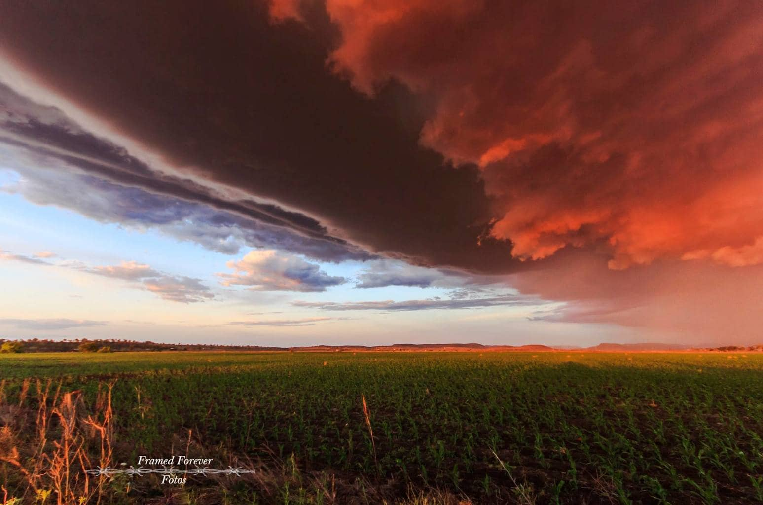 Taken out a Warwick SEQld Australia Last season, waiting patiently for this season to roll on. We followed this storm from Warwick to Allora as the sun went down the colours lit the sky up.