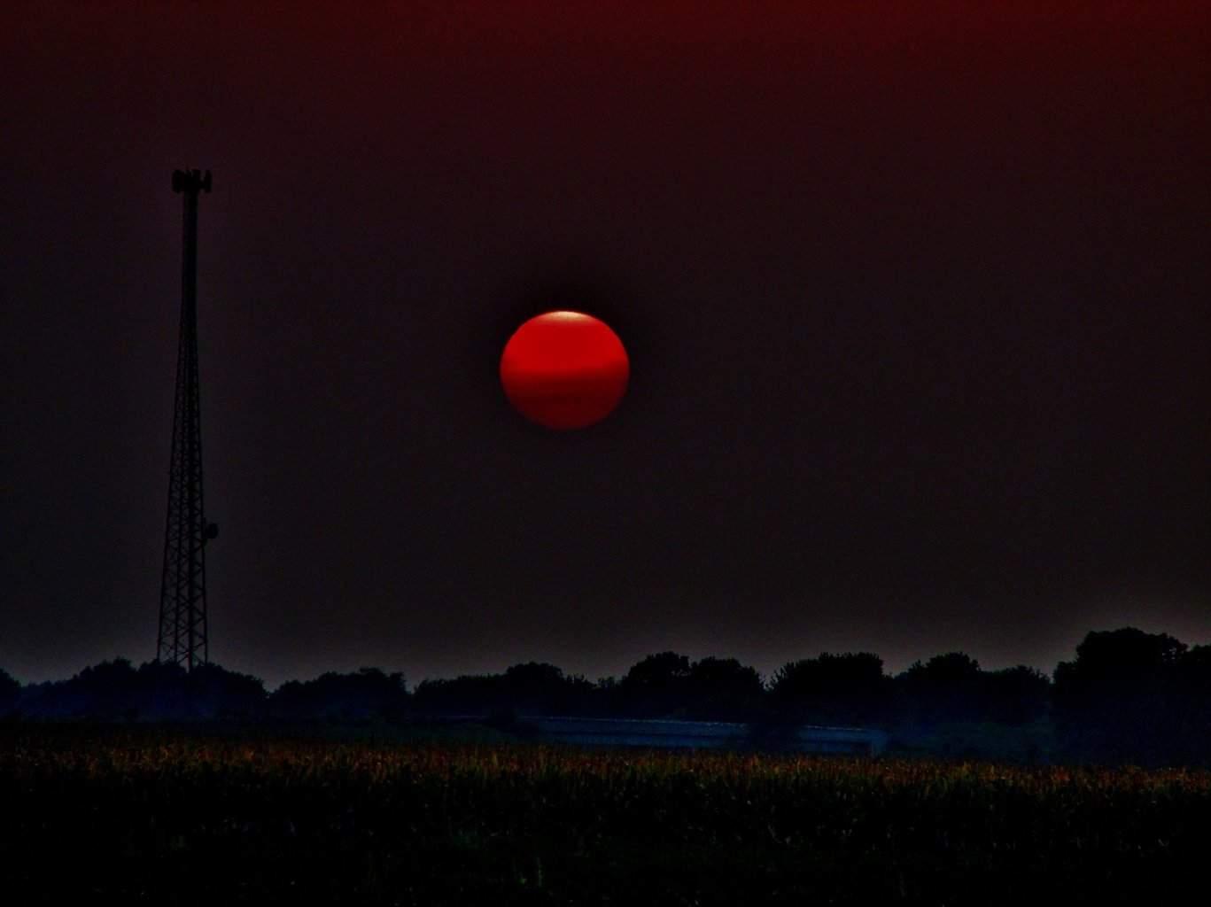 Caught a red sun.