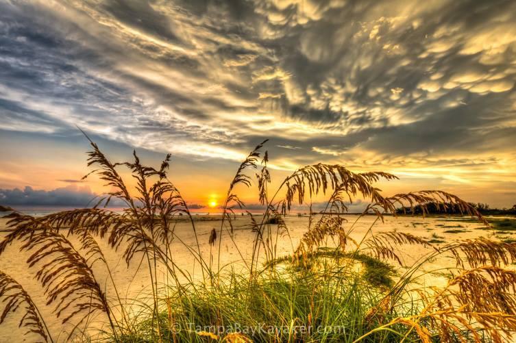 Lido Key Sarasota Florida - Sunset, Sea Oats and Mammatus Clouds