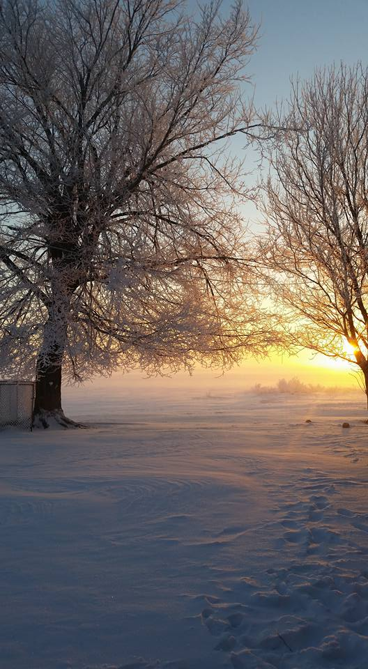 This was sunrise, during this past 2014-2015 winter season. Location: Owensboro, ky