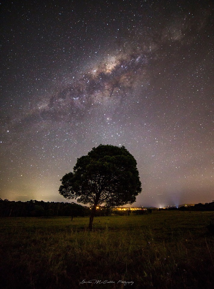 The Milky Way up above this lone tree on a farm in Australia!