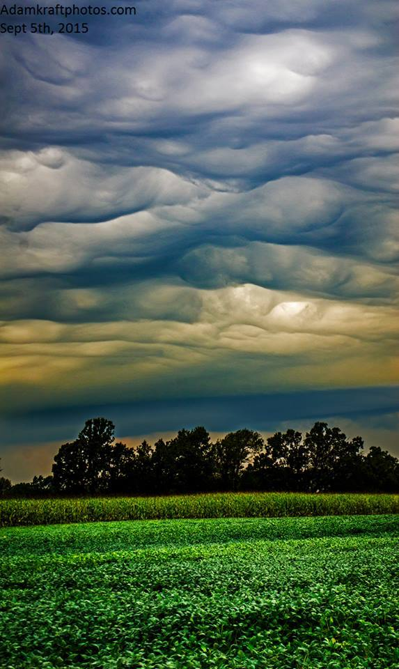 This has been my best storm photo op season to date and today elevated storms didn't disappoint with a great Asperatus Undulatus display. Pic taken on the very west end of Spring Arbor MI.