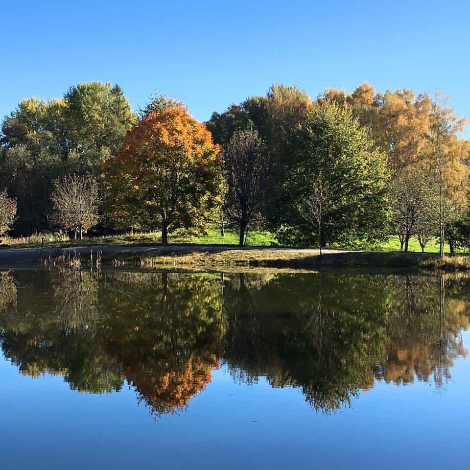Autumn in Sweden