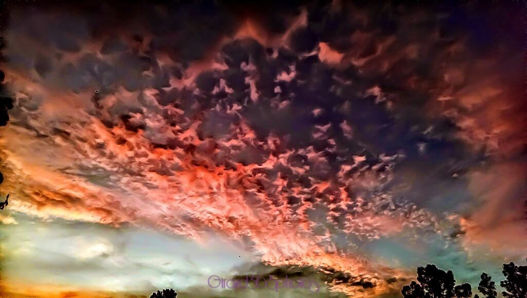 Wild Skies in Florida. .. Sunrise from Ridge Manor
