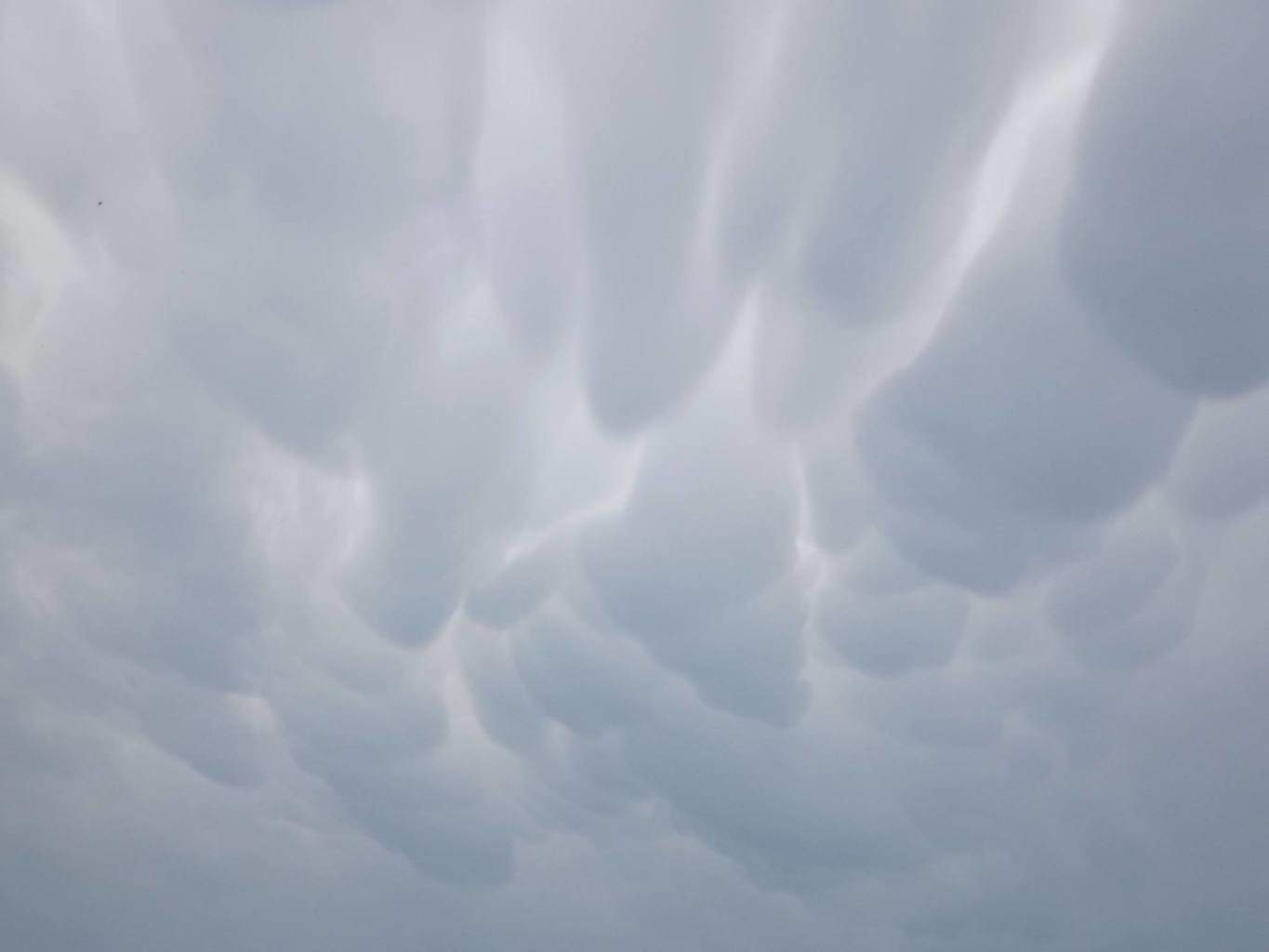 This is my picture of mammatus clouds. I've only seen them once and I was happy to have the camera close-by!