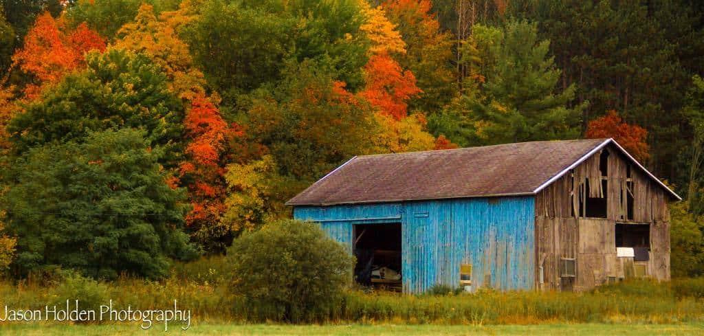 Gorgeous fall morning in Eastern Michigan.