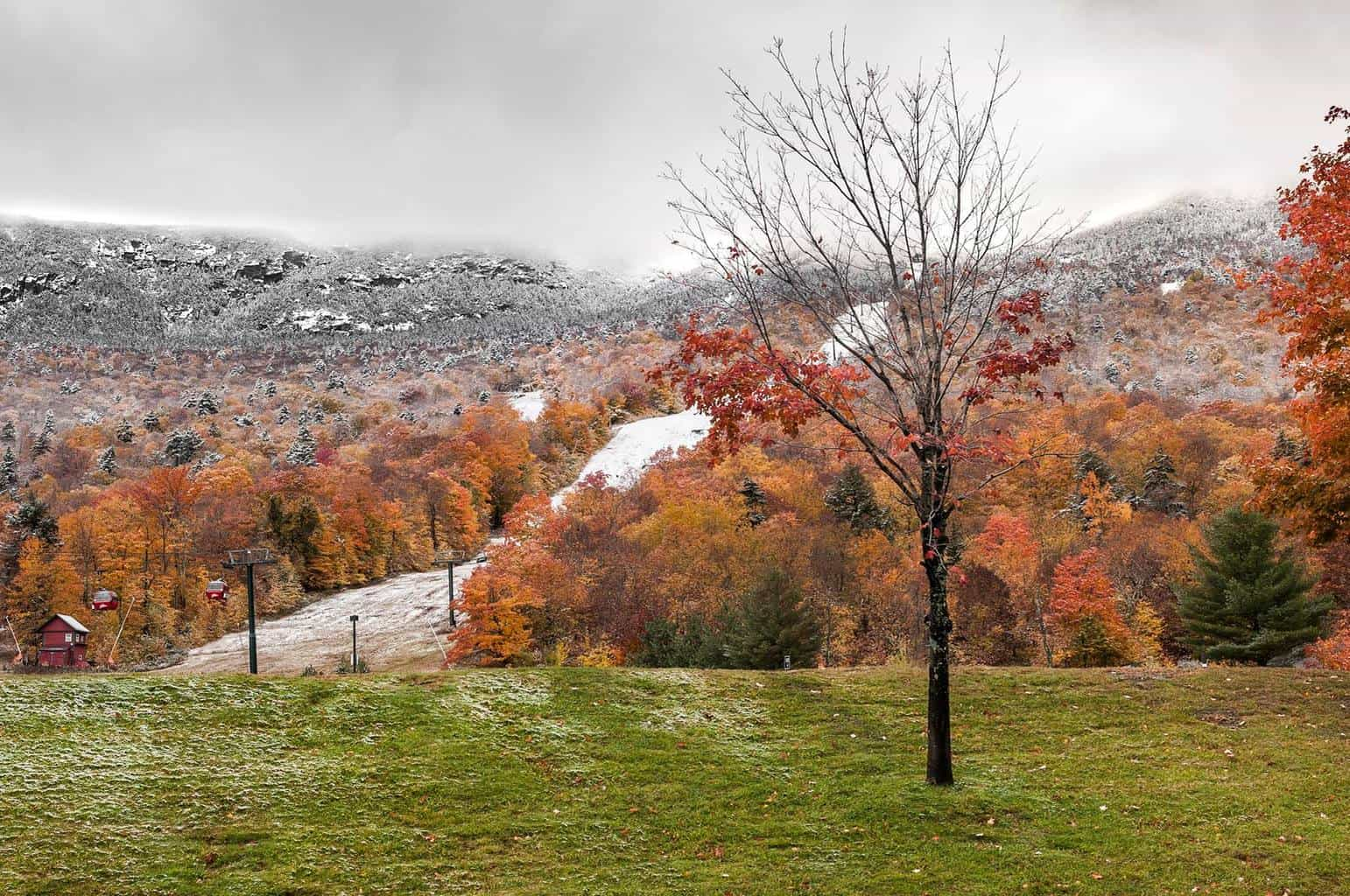 Today we went from foliage to snowliage in Vermont as winter made an early appearance. This was taken at the Stowe Resort: