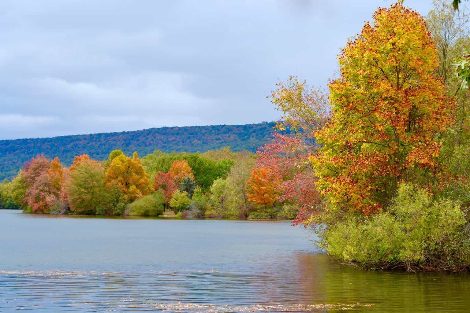 Beautiful fall colors appearing in PA!