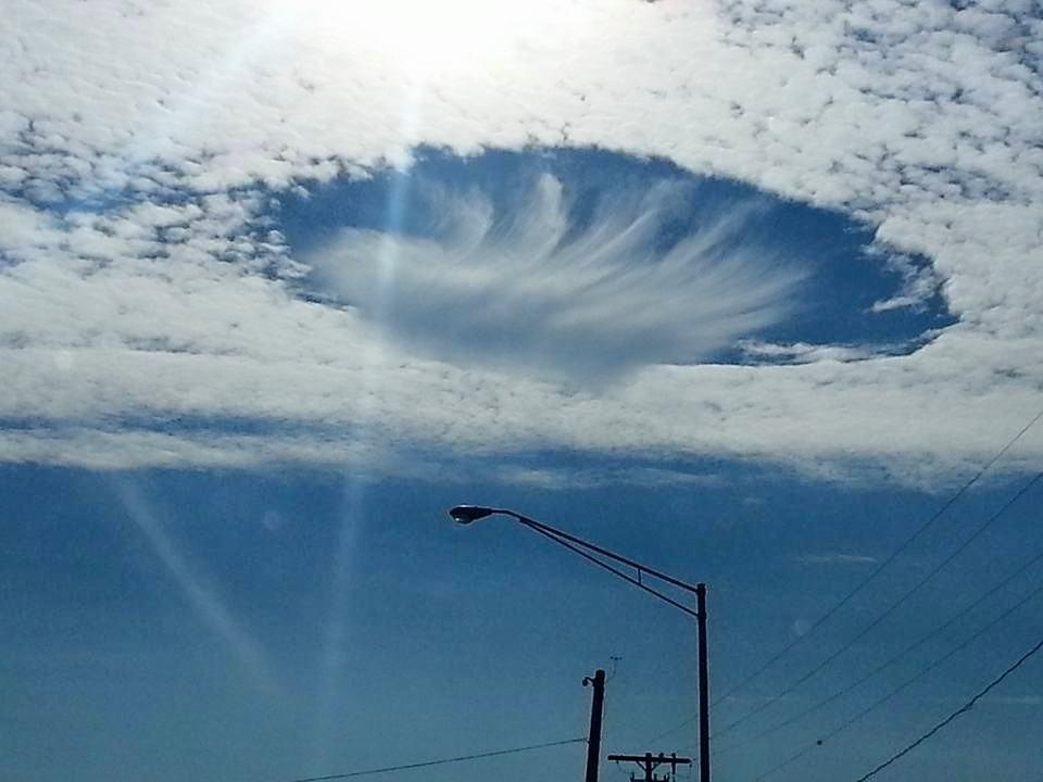 Taken outside of Tampa, Florida