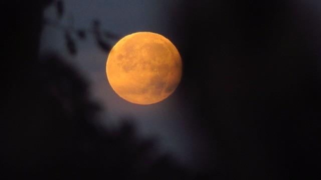 Super moon Netherlands. No editing.