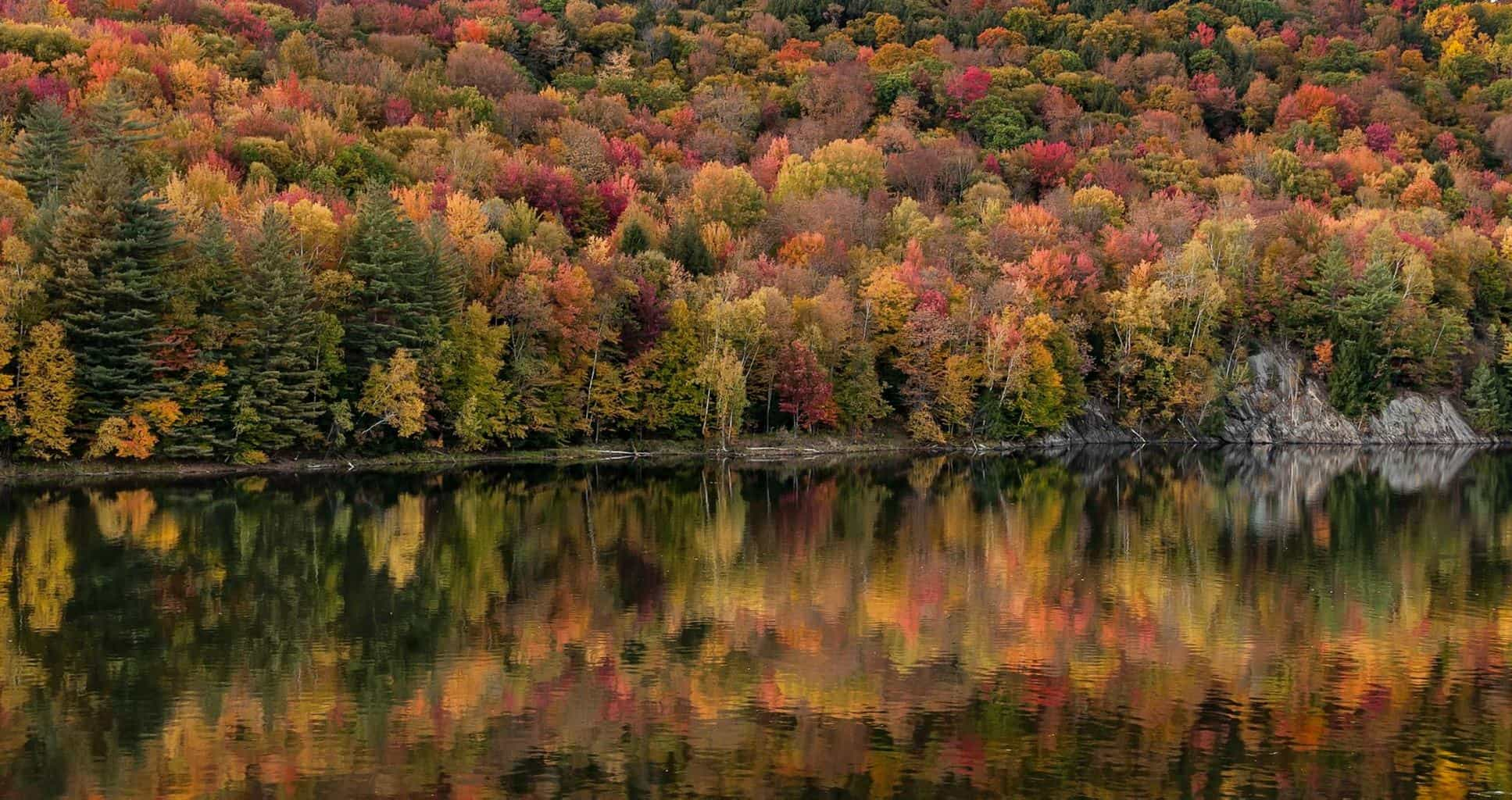 High color has arrived here in Vermont! Taken at the Waterbury Reservoir: