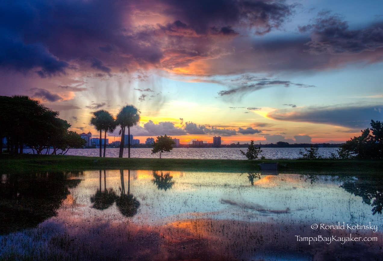 Purple Rain - Sarasota - Florida - Sept. 2015