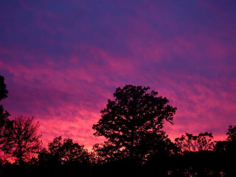 Beautiful Oklahoma sunset this evening