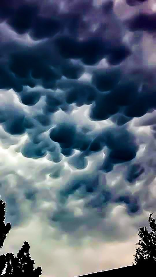 Mammatus Clouds taken in my front yard in Spring Hill, Florida they were on the outskirts of a decent thunderstorm rolling in off the gulf a few weeks ago...these are so cool and onr my favorite clouds to capture