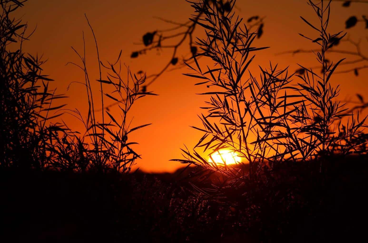sunset Ste. Genevieve Co. Missouri