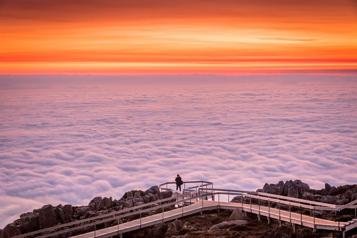 This was sunrise on Sunday from the 1,270m summit of Mt Wellington in Tasmania. Under that fluffy white blanket is Hobart, a city of 200k people. It was raining down in the city and I wasn't hopeful we'd even see the sun. Couldn't believe our luck when we burst out of the clouds and saw this!