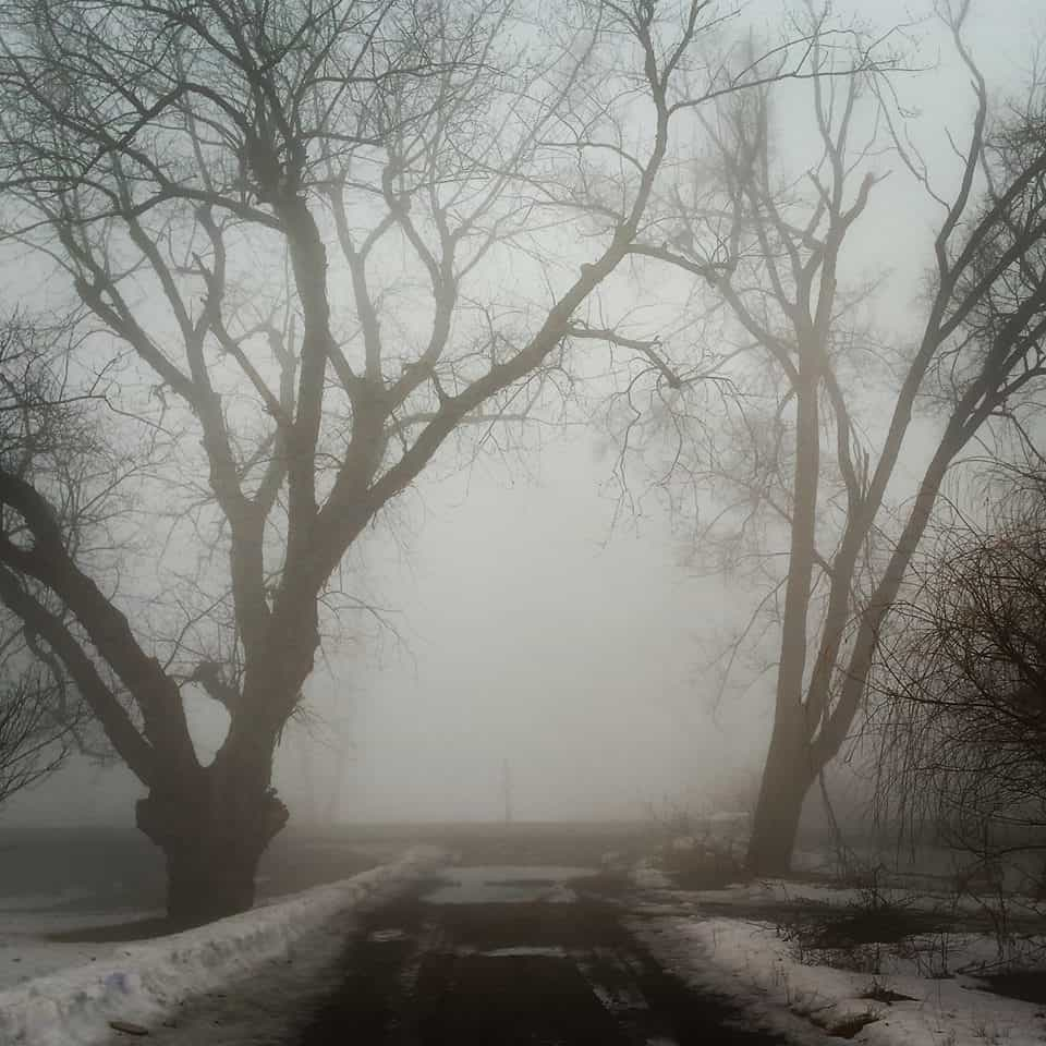 Creepy fog from March 2015... my dad's driveway in Hastings Michigan