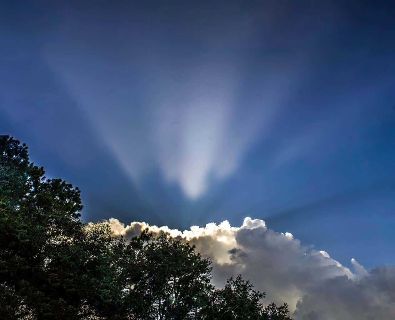 """Heavens Light"" Citrus Springs, FL  July 2015"
