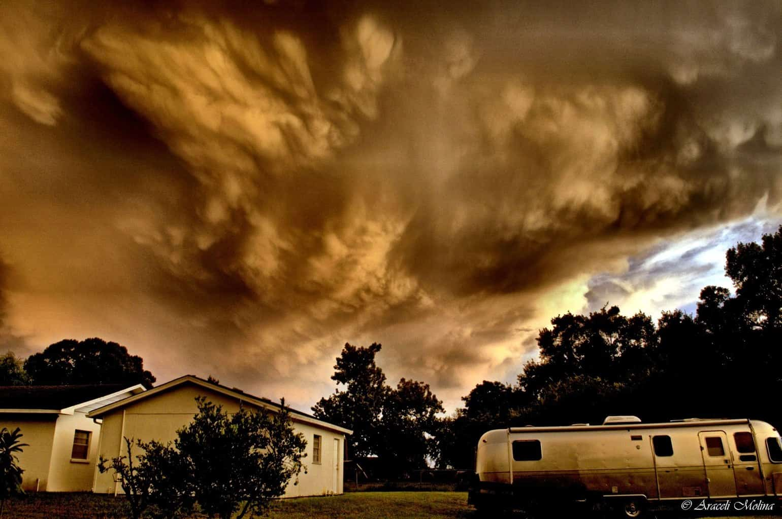 """""""Roaring Thunderstorm"""" """"Why can't we just get in the running Airstream and head to the Cemetery?"""" """"Are you crazy?"""" """"Lets hide behind the chainsaws!"""" Nikon D3200 August 2015 — in Bradenton, Florida."""