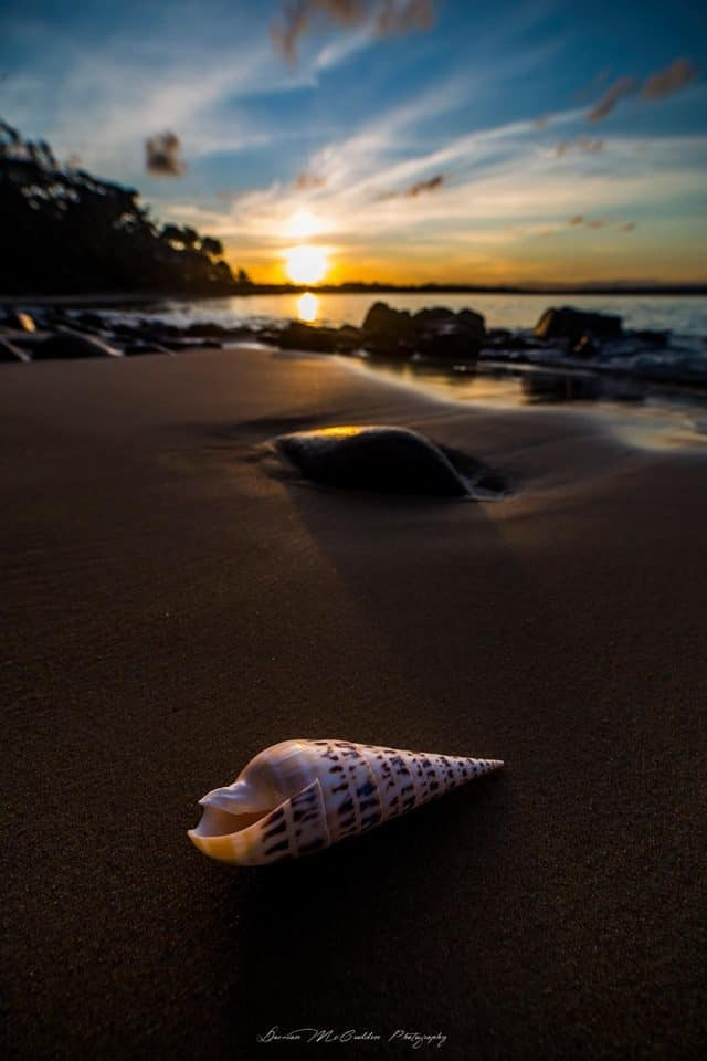Little Cove, Noosa Heads, Australia.  Yesterday afternoons sunset was pretty beautiful and with the shell it was even better