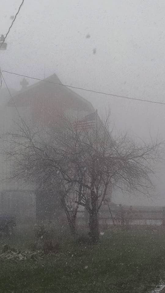 A blustery snowy day here in Clayton Wisconsin