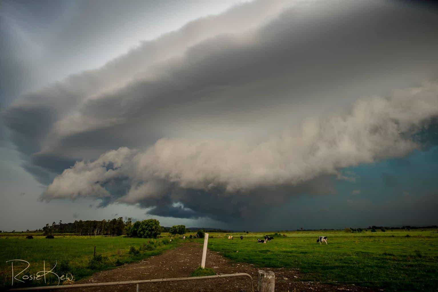 Very photogenic severe warned storm came across our area this afternoon. I had waited all day in very hot sticky temps and was well rewarded as this beast rode the upper trough. This was my last shot before bailing and heading home. Near Coraki Northern NSW Australia.