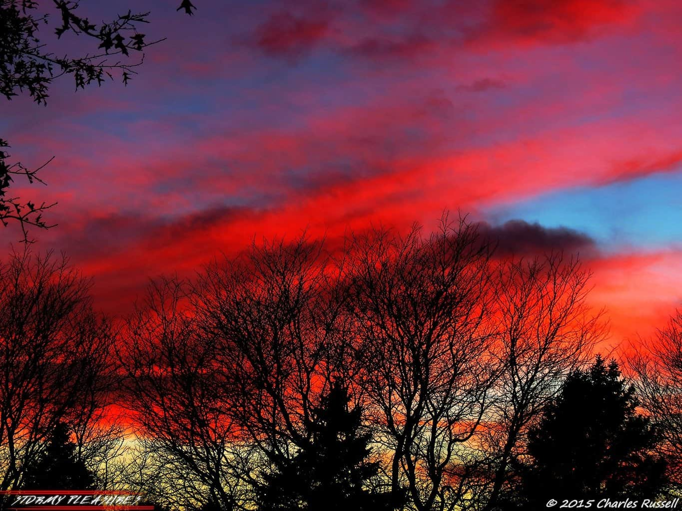 Well this was a nice surprise! Just last evening here in Michigan! Gorgeous sunset!! 11/14/15 One of the best I have seen on awhile!