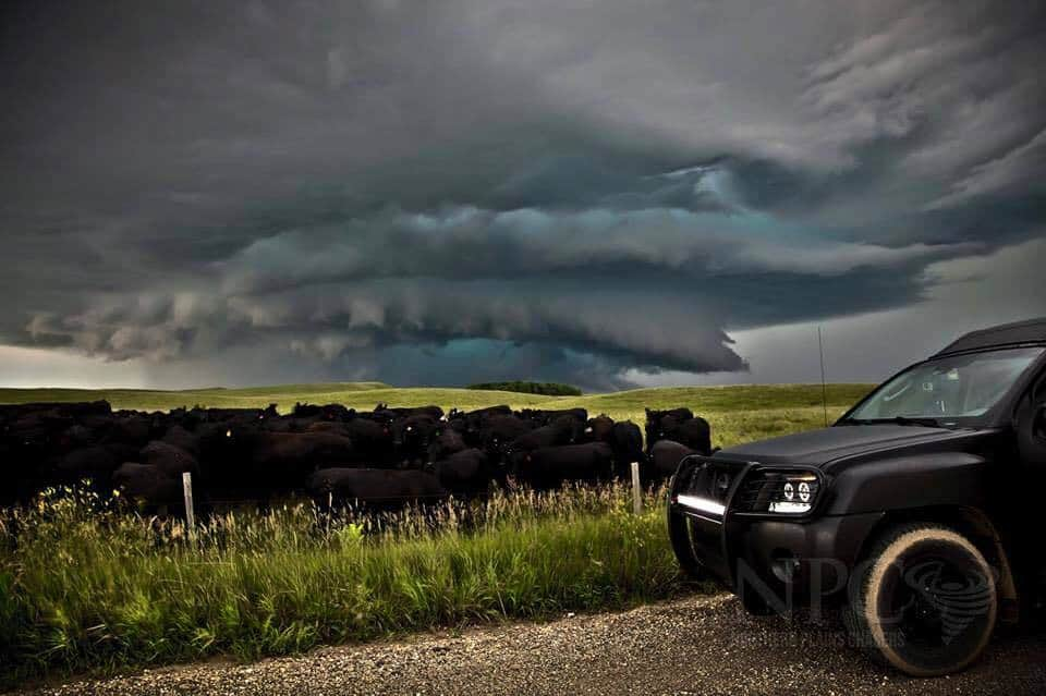 Probably the most epic meso/wall I've ever witnessed.#WeGotCows