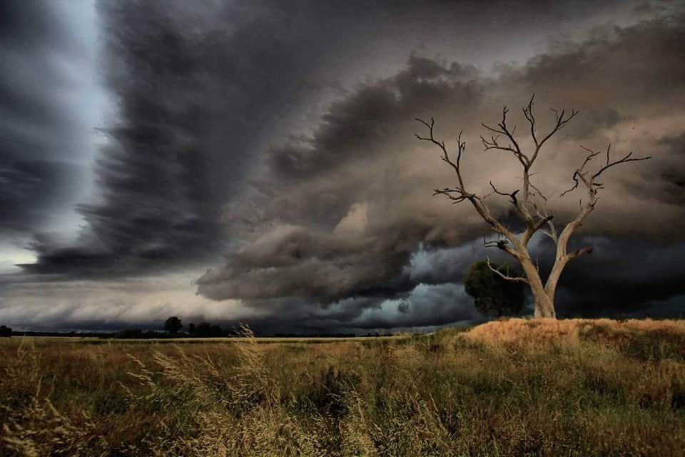Ariah Park NSW Australia on Sunday afternoon as a beautiful squall line rips through the area.  Unfortunately the line lost its amazing earlier structure during this brief stop but the landscape was too nice to pass up this opportunity. Also had a very close encounter with a brown snake about 1 minute after taking this pic. In all the excitement of the lightning and shelf clouds I had neglected to notice i was about 50 cm from stepping on the thing! For those who don't know the brown is one of out deadliest snakes and I think from memory the 3rd most poisoness in the world