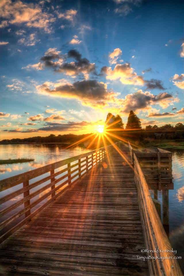 Sunset at the Dock - Florida